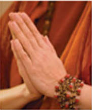 swami-hands-cropped-65